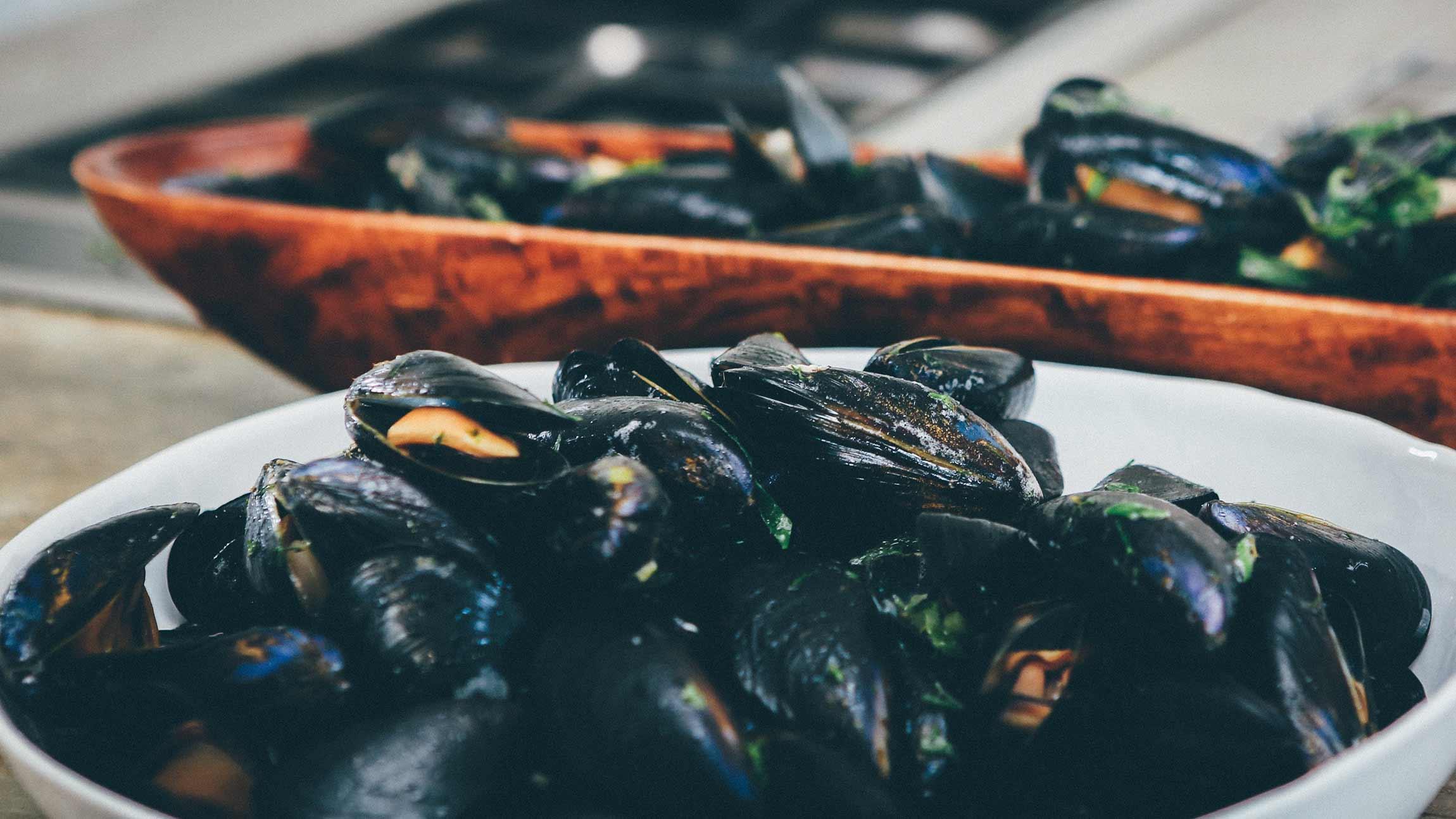 nykokta musslor
