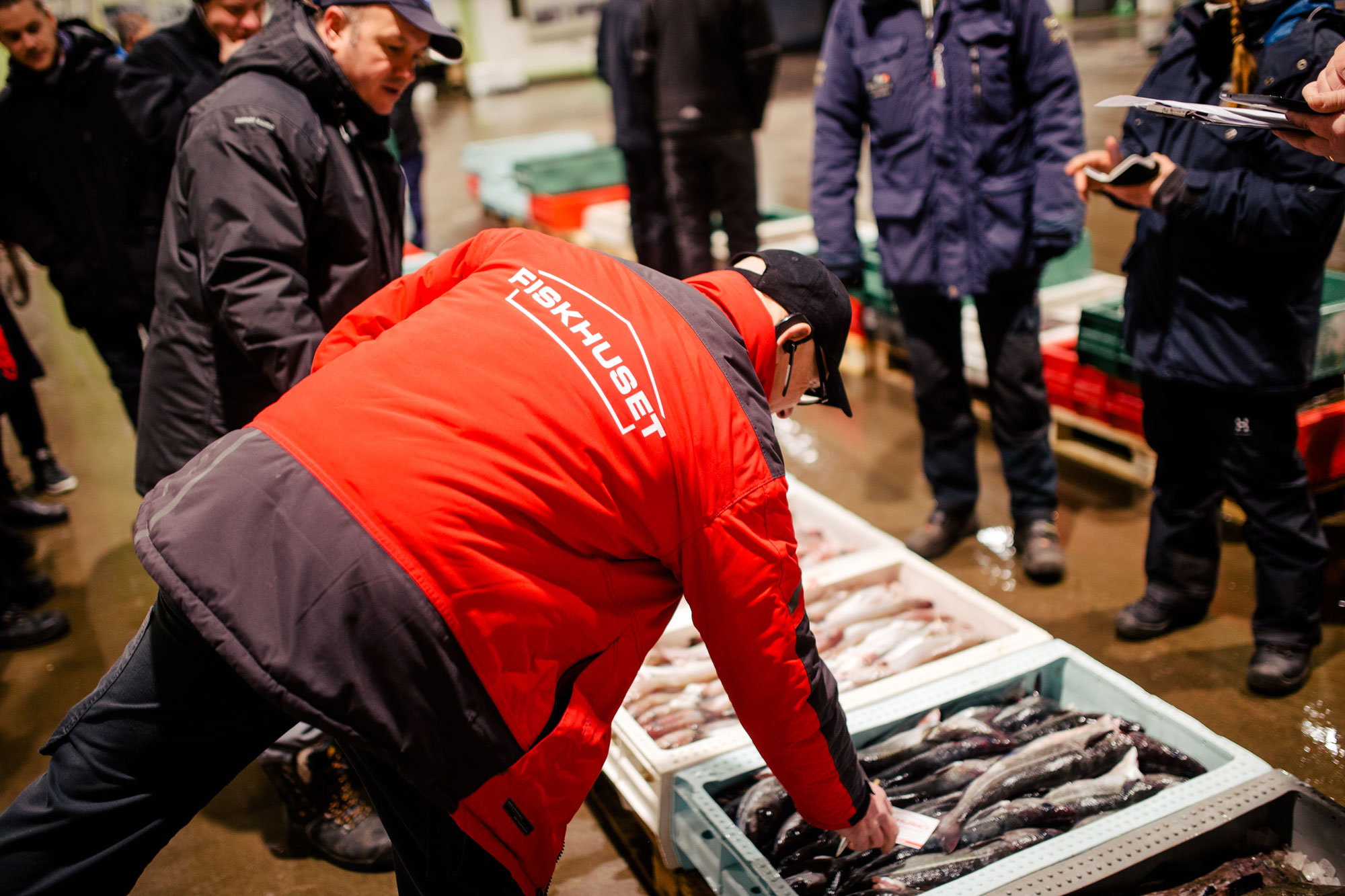 Auktion varje morgon för färsk fisk och bäst priser