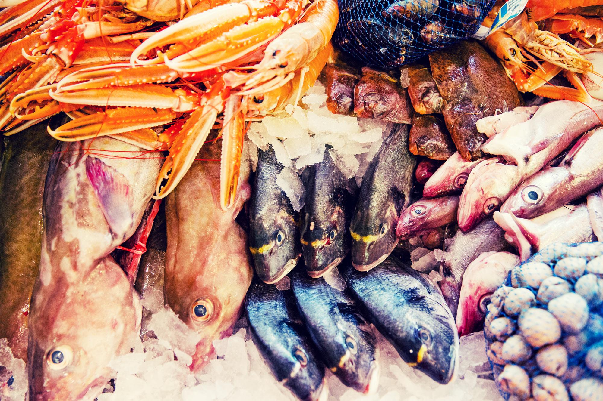 färsk fisk och skaldjur från havet