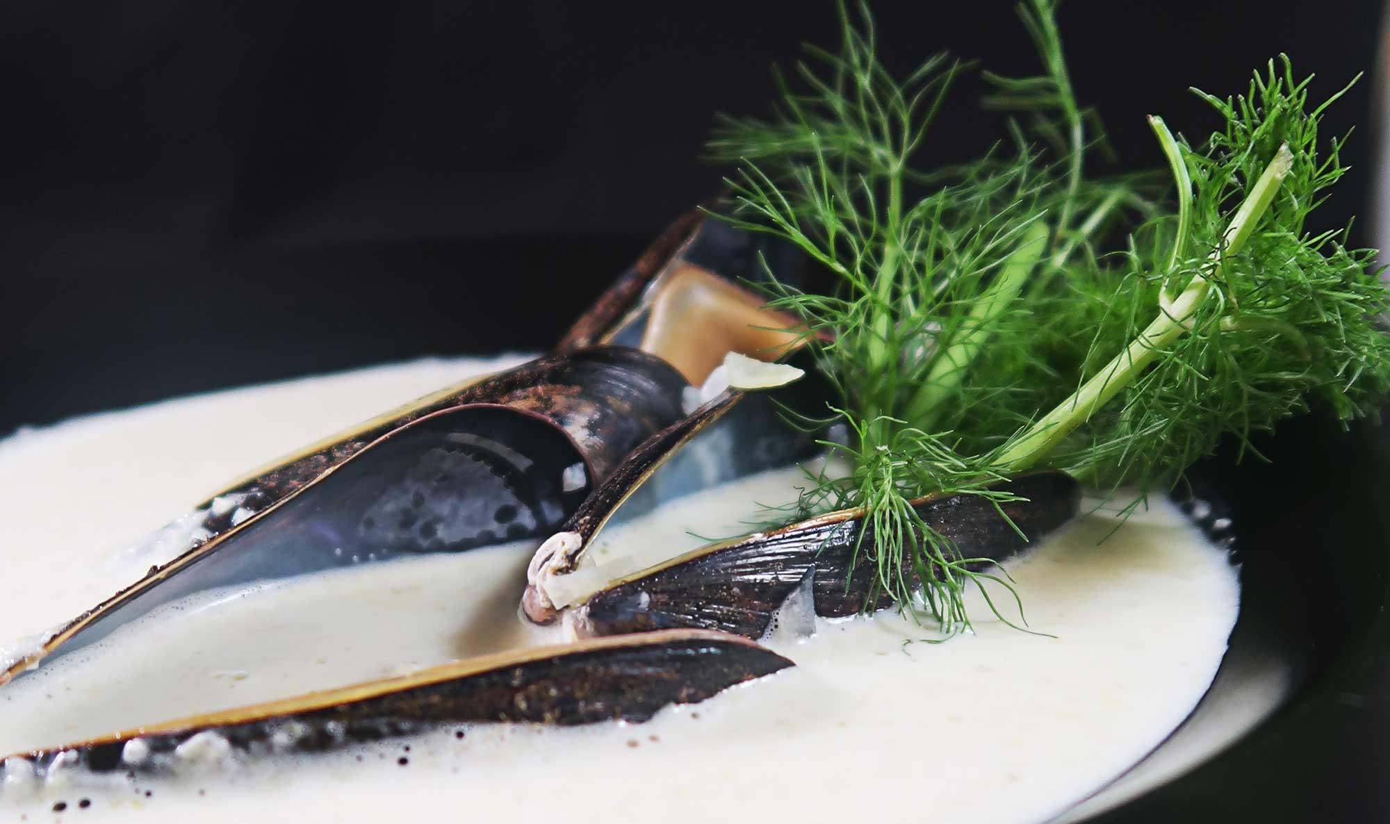 musselsoppa med fänkål