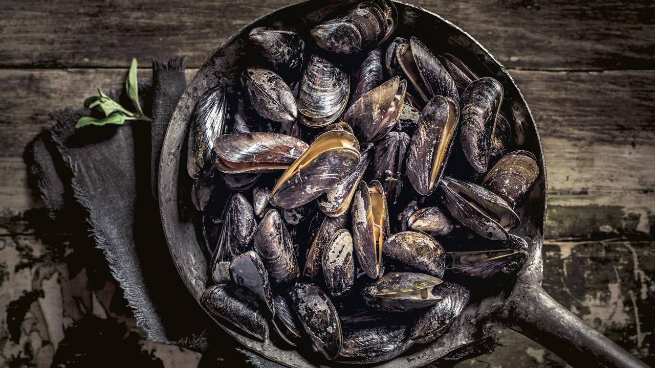 musslor i en panna
